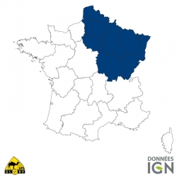 Carte IGN 1/4 de France Nord-Est GLOBE